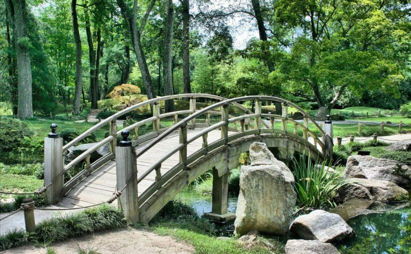 Piękny oraz ładny ogród to zasługa wielu godzin spędzonych  w jego zaciszu w trakcie pielegnacji.